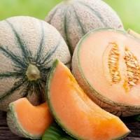 Melon Edgar F1