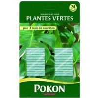 Bâtonnets engrais plantes vertes 24 pcs