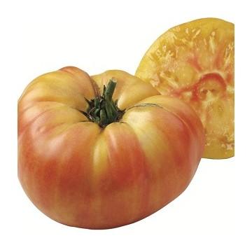 Tomates ananas