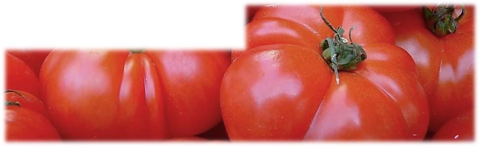 Des Tomates Savoureuses